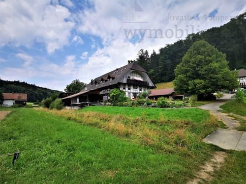 Bauernhaus mit 3 x 4.5 Zi-Whg + Studio