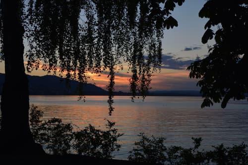 Exklusiv für Sie! Einzigartige Villa an erstklassiger Lage am Zürichsee