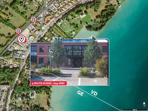 Location bureaux meublés Centre Lac Mies