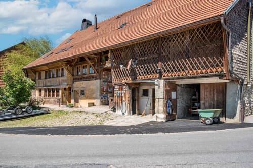 Magnifique centre équestre avec 5 appartements, manège et carré d'entraînement à vendre à Chavannes-sous-Orsonnens