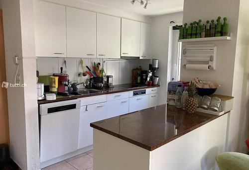 for non-smoking cat-lover: room in modern 4.5 room apartment