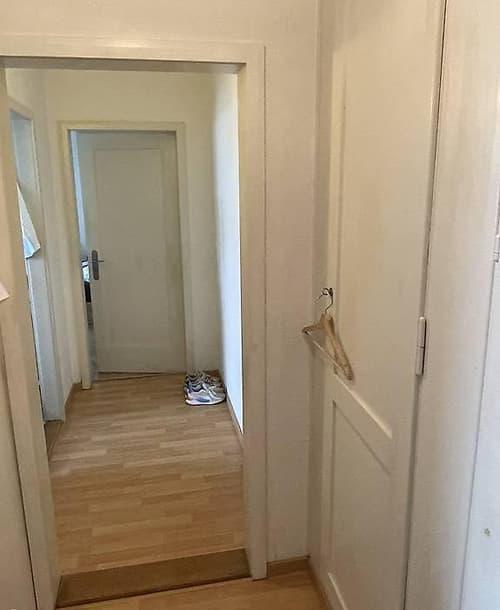 1.5 Zimmer Studio Wohnung am See Nidau