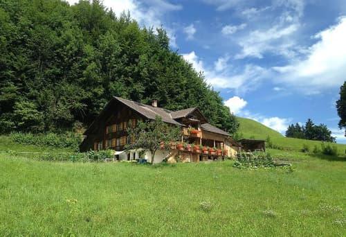 Berner Oberland / 3.5 Zi-Wohnung in Bauernhaus