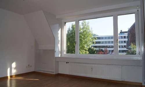 Zu vermieten helle 1-Zimmerwohnung im Weissenbühl