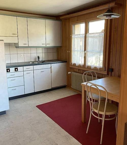 Möblierte 1-Zimmerwohnung in Mühledorf BE