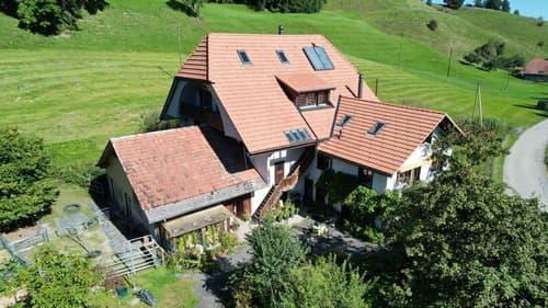 Ein schönes Mehrfamilienhaus mit grossem Grundstück und vielen Nutzungsmöglichkeiten