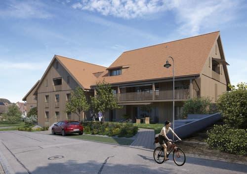 5 .5 Zi-Wohnung in Rickenbach/ZH