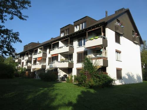 Attraktive Wohnüberbauung in Feuerthalen!