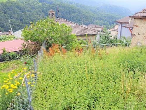 Bel giardino orto