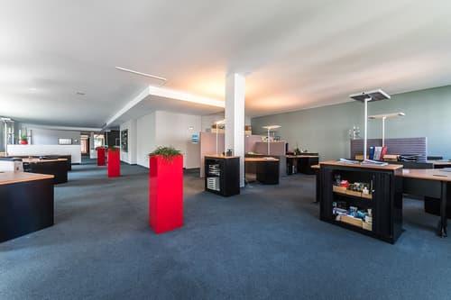 Gewerbefläche/Büroräume in St. Fiden