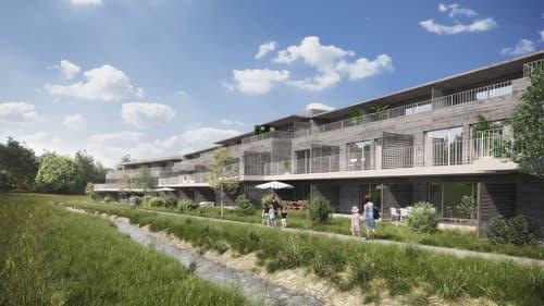 5.5-Zi-Reiheneinfamilienhäuser im Grünen, je nach Typ auf 6.5-Zimmer ausbaubar