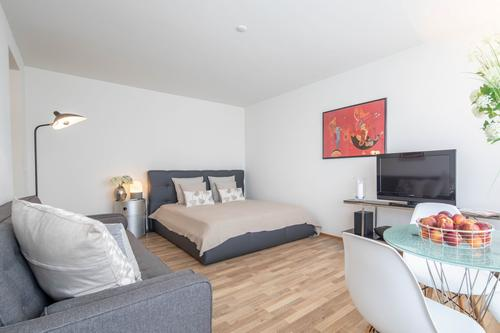 Moderne 1.5 Zimmer Business Apartments