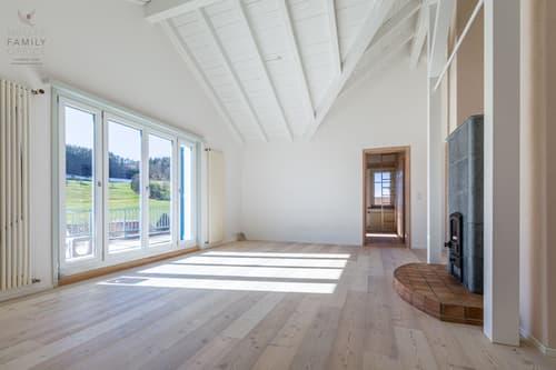 Charmante 4 1/2 Zimmer-Dachwohnung mit grosser Terrasse, herrlicher Aussicht und Cheminée