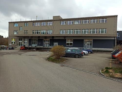 Top erschlossene Ausstellungs- / Bürofläche in Mörschwil direkt an der A1