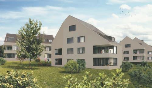 Landparzelle total 4046 m2 mit Architekturverpflichtung für ein Sol...