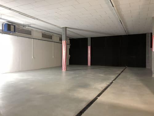 Lager- / Gewerbefläche im Gewerbepark Sattel