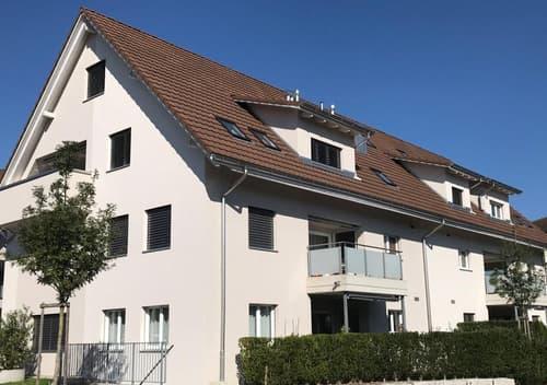 Lichtdurchflutete grosszügige 3.5 Zimmer-Wohnung (1)