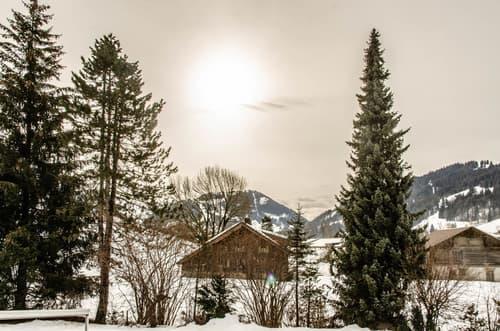 Charmante 4.5-Zimmerwohnung, nähe Gstaad