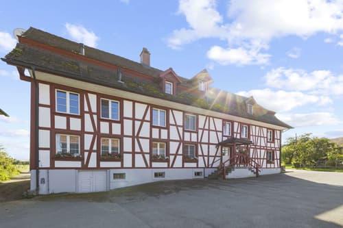 Wohntraum im Grünen - stattliches Mehrfamilienhaus mit Hausteil und grosser Scheune