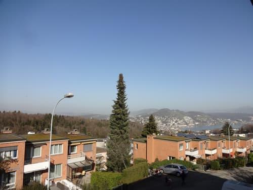 4.5-Zimmer Reihenhaus in Luzern zu vermieten