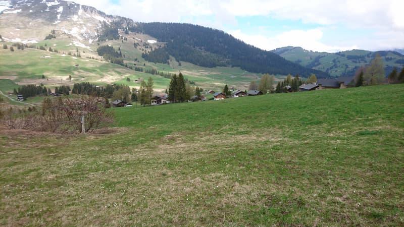 Terrain de 6 300 m2 pour projet para-hôtelier avec rural à rénover (2)