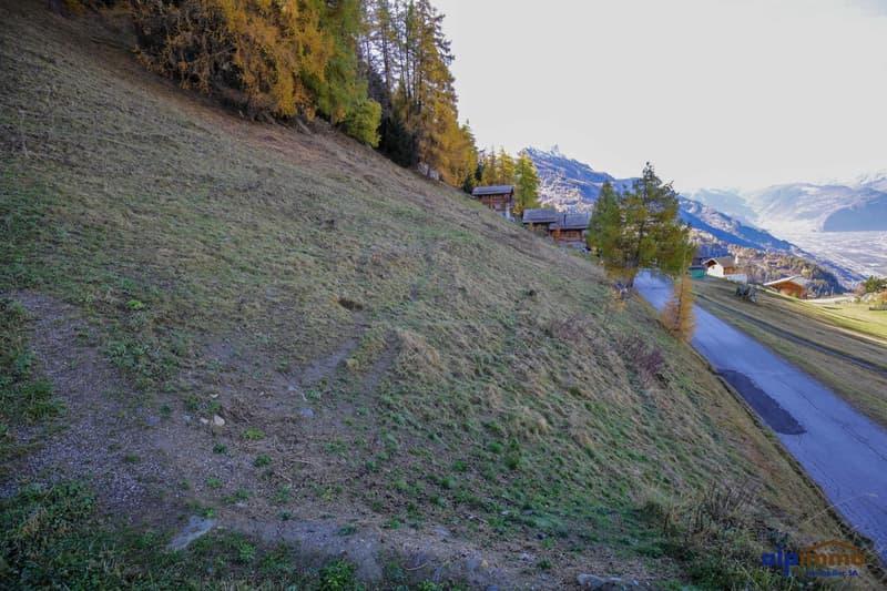 Grand terrain à bâtir avec une belle vue sur les alpes! (2)