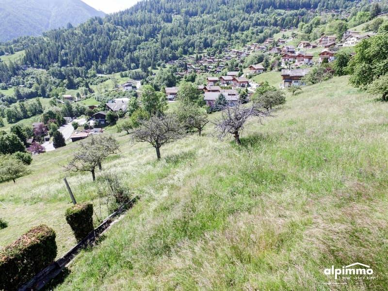 Terrain à bâtir à Nendaz, magnifique situation ! (3)