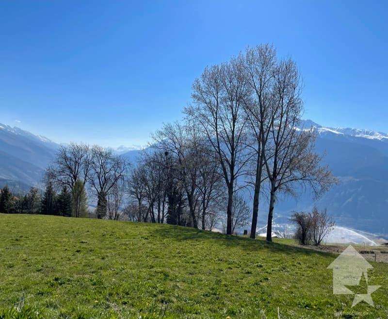 Très beau terrain à batir, plus de 2000m2, au calme et avec vue (1)