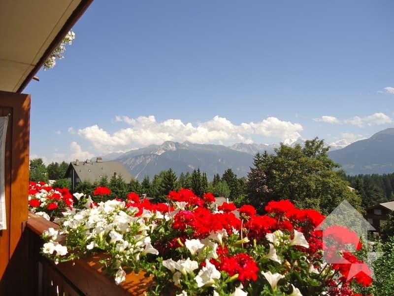 Bel appartement avec  vue splendide sur  les Alpes valaisannes (2)