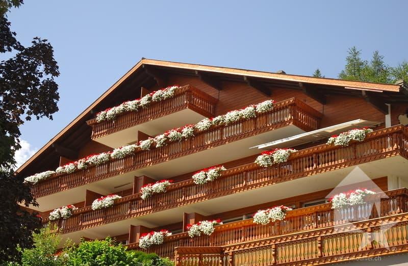 Bel appartement avec  vue splendide sur  les Alpes valaisannes (13)