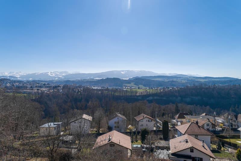 Vue panoramique sur les Préalpes