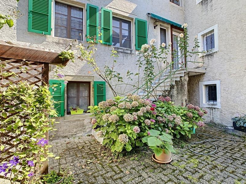 RARE - Petit immeuble de 2 logements (1)
