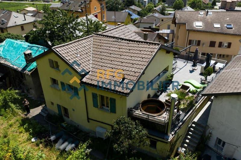 Maison rénovée sur quatre niveaux à Châtaignier ! (1)