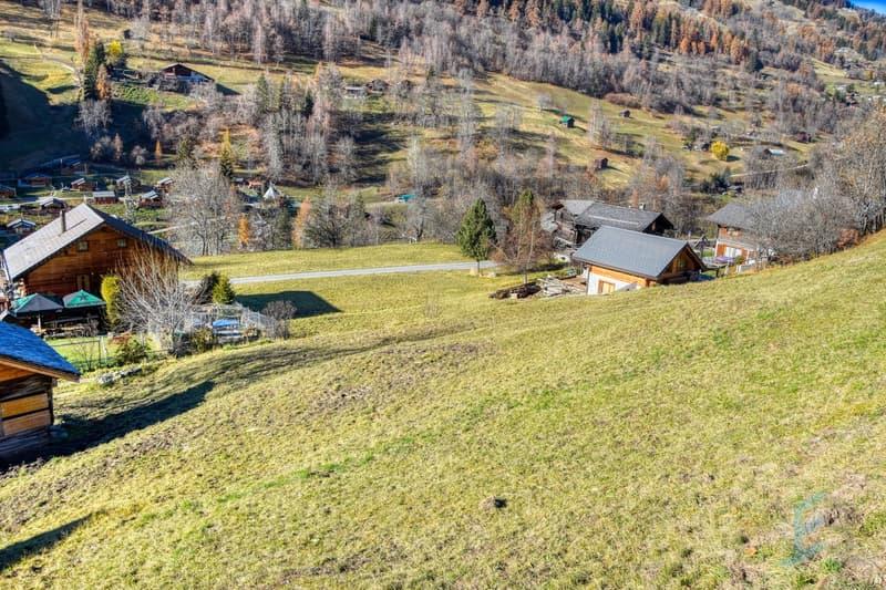 Vue drone / Drohnen-Ansicht / Drone view