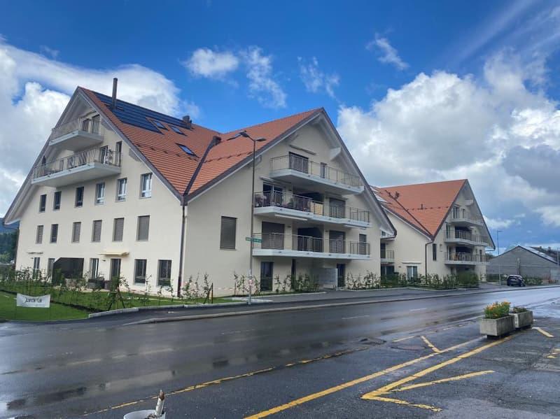 Appartement 3.5 pièces + mezzanine au 3ème étage (13)
