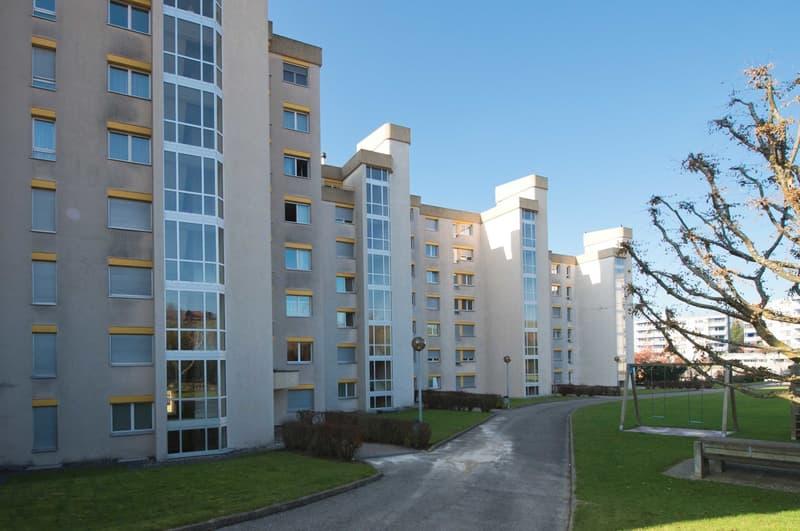 Appartement 4.5 pièces 5ème étage (1)