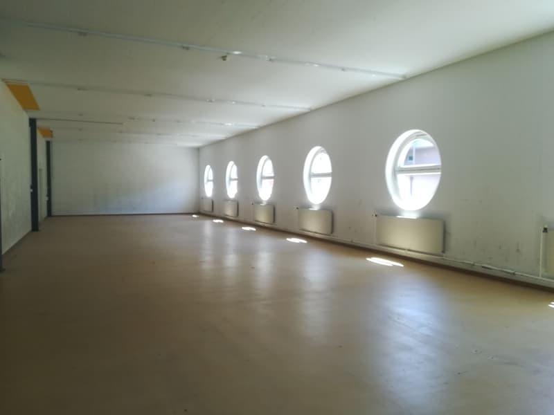 Atelier, local commercial, dépôt de 689 m2 (2)