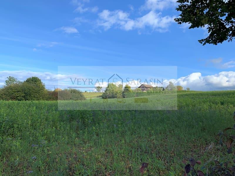 Parcelle voisine en zone agricole (non constructible)