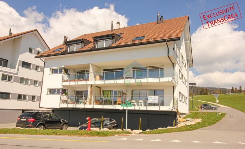 Appt 3,5 pces avec ascenseur, balcon, et superbe vue (1)