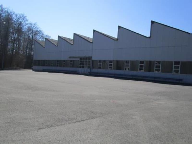 Halle industrielle avec bureaux administratifs et terrain constructible (2)