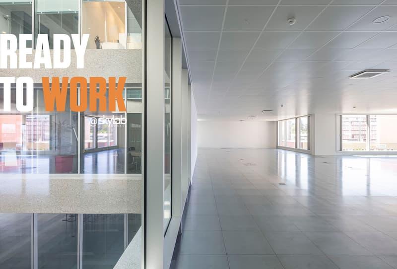 Skylab - 895 m2 d'espaces professionnels prêts à l'emploi (1)