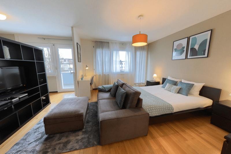 Studios comfort meublés - Genève (Plainpalais) (1)