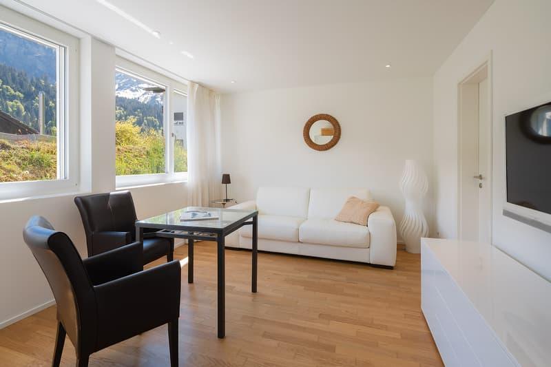 Moderne 1.5 Zimmer Wohnung im beliebten Skigebiet (1)