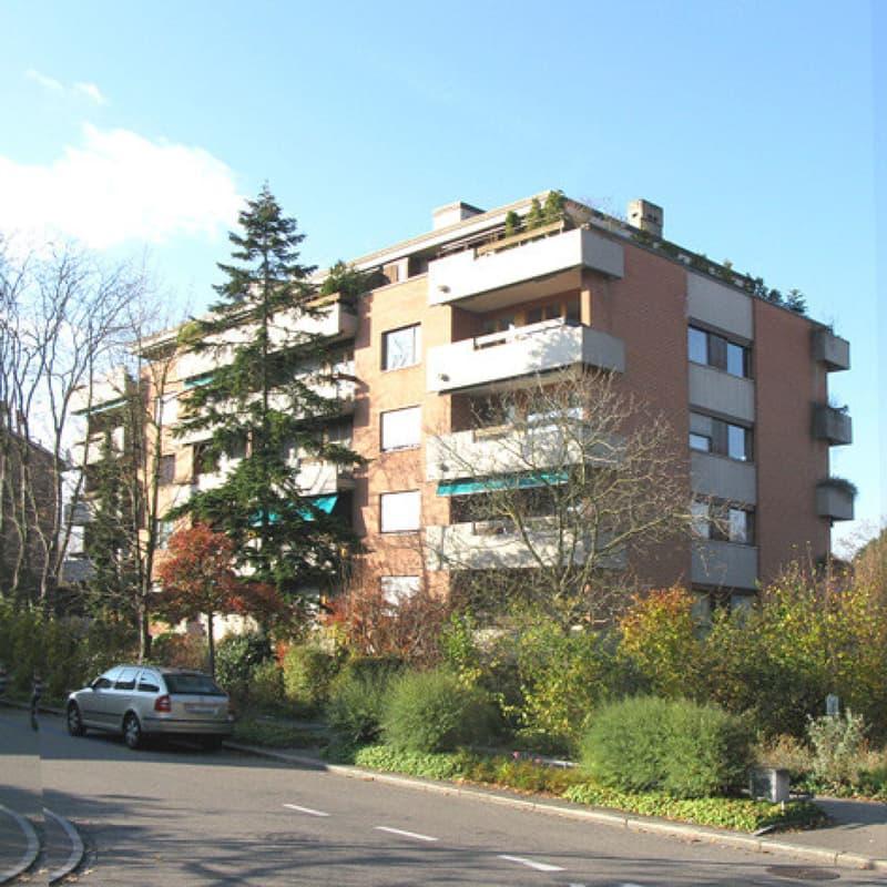 Schulstrasse, Birsfelden - Auto-Einstellplätze zu vermieten (1)