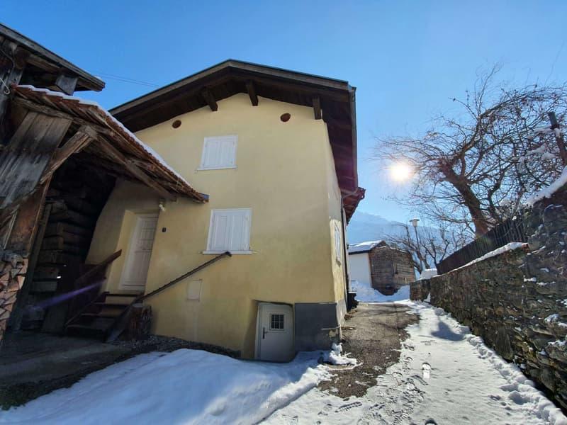 Tiny House im Schams (2)