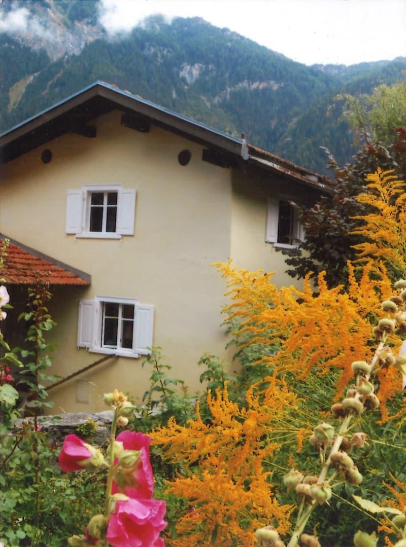 Tiny House im Schams (1)