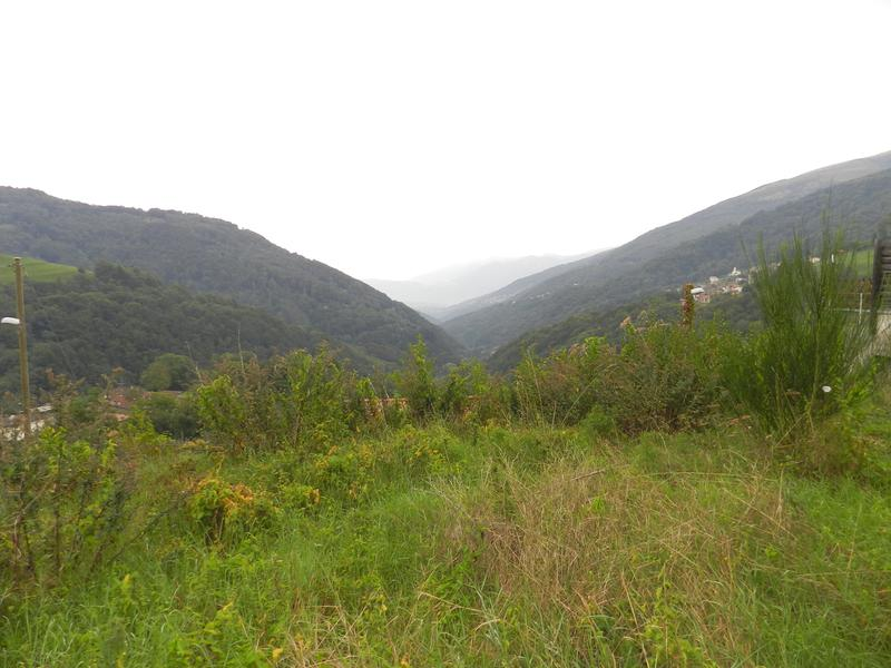 Bogno Val Colla 3 terreni edificabili (2)
