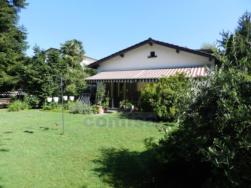 MUZZANO Villa con piscina e atelier, vista aperta nel verde (1)
