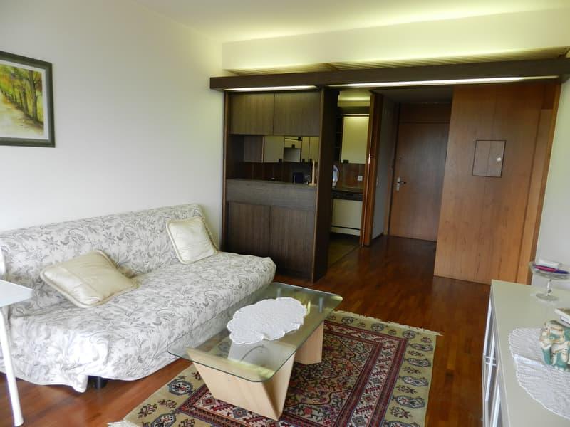 CASSARATE-CASTAGNOLA Appartamento 2.5 locali ammobiliato vista lago (2)