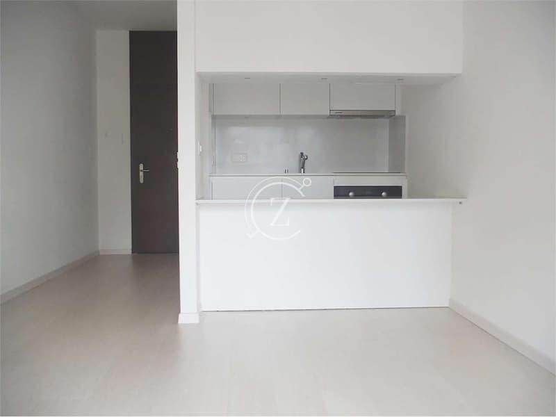 Affittiamo luminoso monolocale rinnovato a Lugano (1)